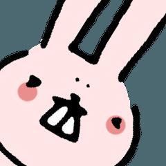 ほんのりシニカルで表情の少ない関西ウサギ