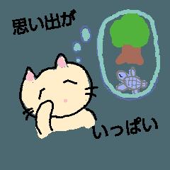 夢見る屋久島