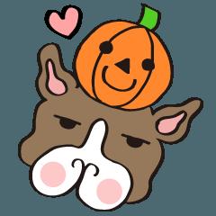 ★フレンチブルドッグのハロウィン★