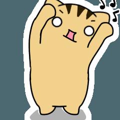 [LINEスタンプ] 動くよ!キジトラにゃんこ (1)