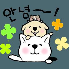 動く▷わんことモルの韓国語 その1