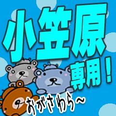 ★小笠原★専用
