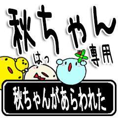 ★秋ちゃん★専用