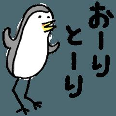石垣島のクイナさん
