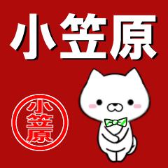 超★小笠原(おがさわら・おがさはら)なイヌ