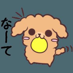 名古屋弁のトイプー 3
