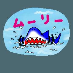 サメ(日常)