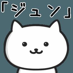★ジュン★が使う猫