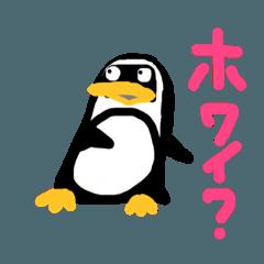 僕はペンギンのクー。
