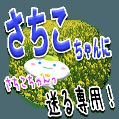 ★さちこちゃんに送る★専用(写真背景付き)