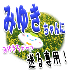 ★みゆきちゃんに送る★専用(写真背景付き)