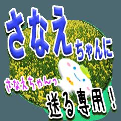 ★さなえちゃんに送る★専用(写真背景付き)