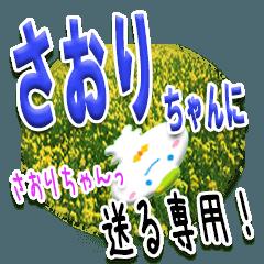 ★さおりちゃんに送る★専用(写真背景付き)