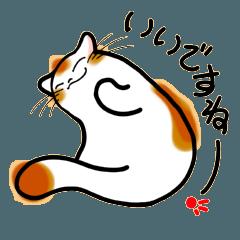 [LINEスタンプ] 和風猫<七>