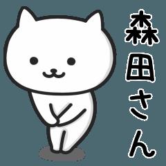 森田(もりた)さんが使える猫