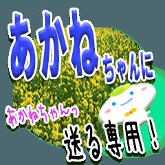 ★あかねちゃんに送る★専用(写真背景付き)