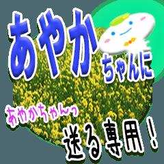 ★あやかちゃんに送る★専用(写真背景付き)