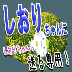 ★しおりちゃんに送る★専用(写真背景付き)