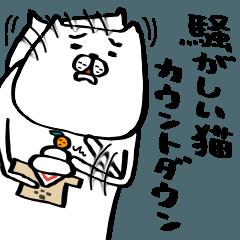 騒がしい猫 カウントダウン