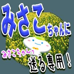 ★みさこちゃんに送る★専用(写真背景付き)