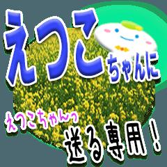 ★えつこちゃんに送る★専用(写真背景付き)