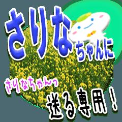 ★さりなちゃんに送る★専用(写真背景付き)
