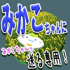 ★みかこちゃんに送る★専用(写真背景付き)