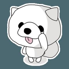 【ネガティブすぎる…】犬のラブ♡