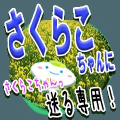 ★さくらこちゃんに送る★専用(写真背景付)