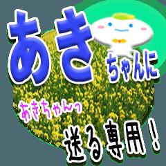 ★あきちゃんに送る★専用(写真背景付き)