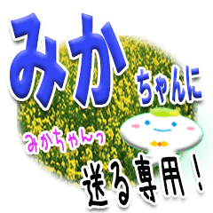 ★みかちゃんに送る★専用(写真背景付き)