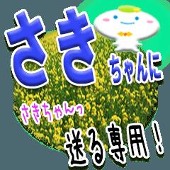 ★さきちゃんに送る★専用(写真背景付き)