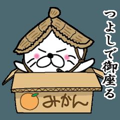 [LINEスタンプ] 【つよし】あざらし侍 (1)