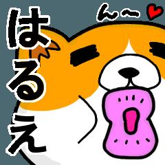 [LINEスタンプ] はるえより愛を込めて(名前スタンプ・猫)