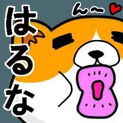 [LINEスタンプ] はるなより愛を込めて(名前スタンプ・猫)