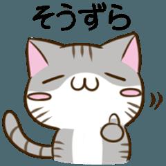 静岡弁のキジトラねことハムスター4