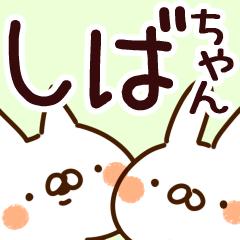 【しばちゃん】専用