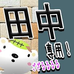 ★武士語の田中さん★(写真背景付き)
