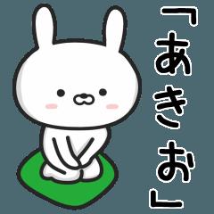 【あきお】が使うウサギ