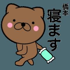 【橋本】が使う主婦が作ったデカ文字ネコ