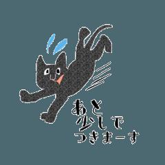 [LINEスタンプ] many many many cat