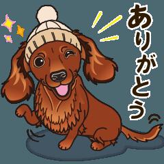 気軽にスタンプ ダックス(レッド) 冬編