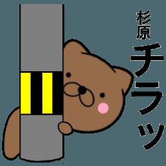 【杉原】が使う主婦が作ったデカ文字ネコ