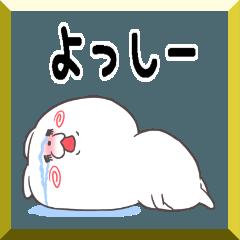 【50音順お名前A】よっしー