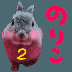 うさぎさん大好き【のりこ】名前スタンプ2