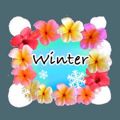 [LINEスタンプ] みんな大好き南国ハワイのプルメリアと雪