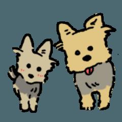 ヨークシャーテリアの犬スタンプ