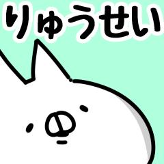 【りゅうせい】専用