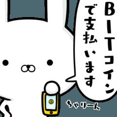 ☆デキる☆容疑者ウサギ