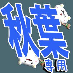 ★S級の秋葉さん★専用